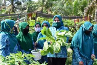 Alhamdulillah, PKK Desa Tasik Juang Binaan TP PKK Inhu Wakili Riau ke Tingkat Nasional